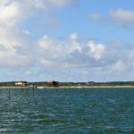 Autour de l'Île aux Oiseaux, Arcachon
